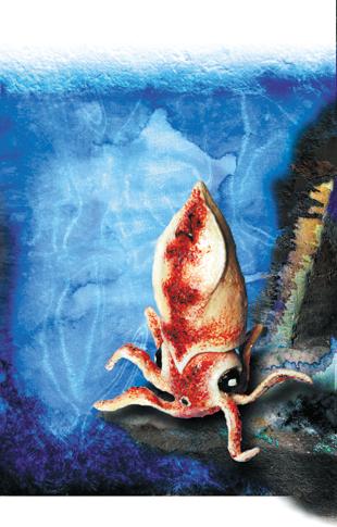 cliff- squid - zine page 7 - blog. Neil Hughes Puppet Illustration.
